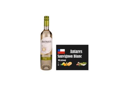 Antares Sauvignon Blanc Wall of Wine I Like Wine ILikeWine.nu Chili